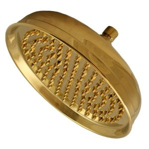 """Polished Brass 10"""" Round Shower Head with Metal Tips"""