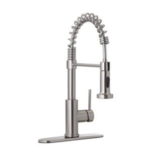 Stainless Steel Spring Neck Pull-Down Kitchen Faucet